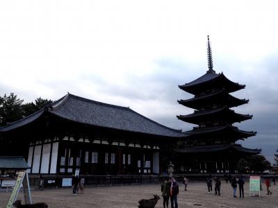 奈良に行く用事があり興福寺へ