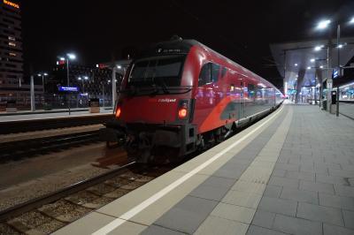 2019年年末~2020年正月 ヨーロッパ家族旅行 ウィーンへ  12/27、28