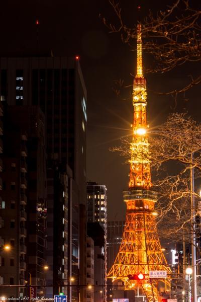 次男の結婚式にかこつけて東京タワー撮影^^;