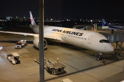 JL330、FUK→HND(A359、JA05XJ、F)