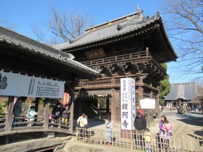 日本百名城巡りで足利氏館・鑁阿寺(ばんなじ)へ