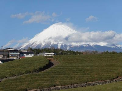 散歩 2020.01.08 =新雪が積もった富士山見ながら…=