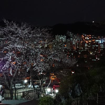 釜山へ行きたいかー! 前編