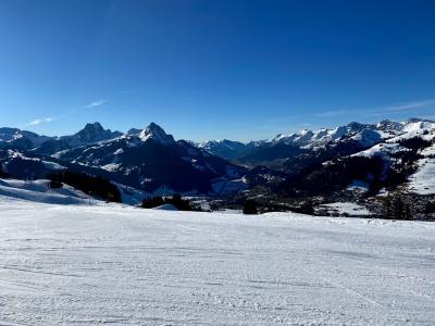 スイスのセレブなスキーリゾート・グシュタードで1泊2日スキー旅行