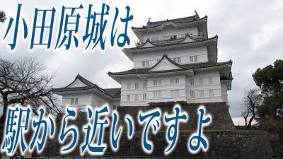 小田原城 駅から近いですよ