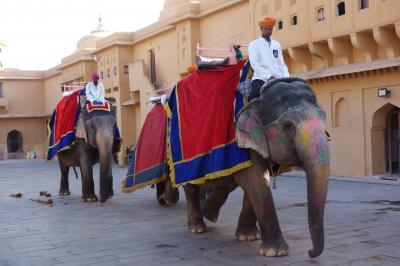 インド旅行②(ジャイプール:風の宮殿、アンベール城)