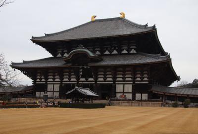 冬の枯れの東大寺散策