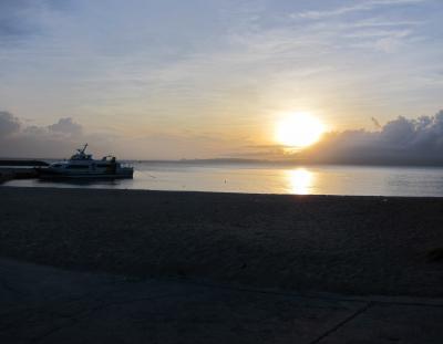 2014年6月沖縄旅行 ヤンバルクイナに会えたよ! 4日目