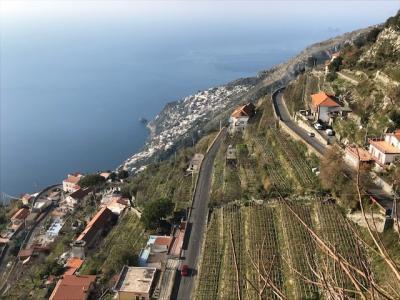 南イタリア6日間の旅
