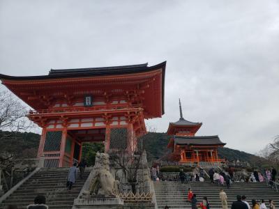 大阪京都の旅