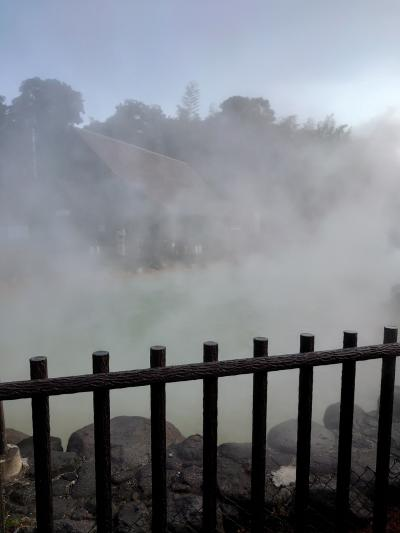 2020年1月  HISバーゲン別府温泉2泊3日の旅