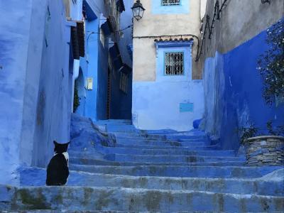 2019年冬~モロッコ9日間②シャウエン