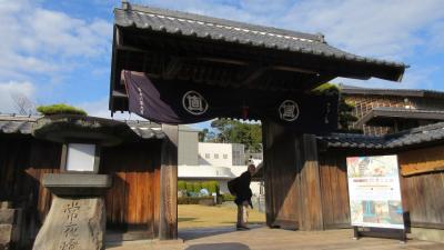 遠州・桜エビと富士山の絶景を求めて(1) 東海道16番めの由比宿へ