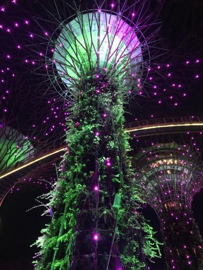 エアチャイナで行くシンガポール1泊4日の旅+北京もちょこっと観光
