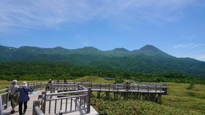 6月の北海道ツアーに行ってきた!美しき北海道とっておき周遊4日間、その②摩周湖~知床&層雲峡温泉