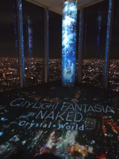 2020年 大阪マリオット都ホテル コンフォートルームと日本一高いビル あべのハルカス