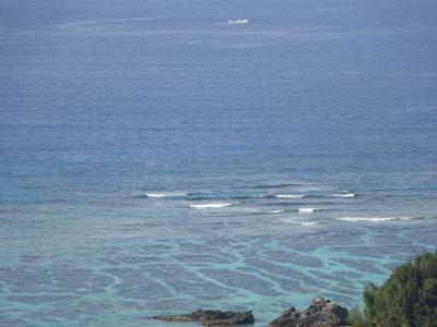 2020年の旅行第一弾は、やっぱり沖縄 ①