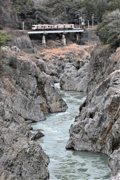 鵜沼の層状チャート・飛水峡の甌穴と犬山城~地層から日本の成り立ちを知る~(岐阜愛知)