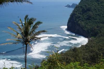 ハワイ島12日間 3日~4日目;Pololu渓谷へ初ドライブ。牛T-Bone・鮑のBBQ