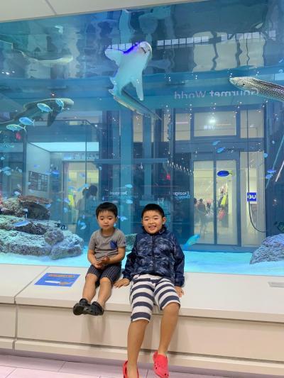 毎年恒例の家族旅行 7歳3歳と行く冬休み沖縄  -その5-