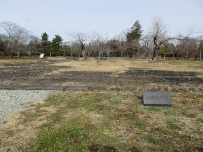 近くて遠かった百名城の多賀城、ついに登城!