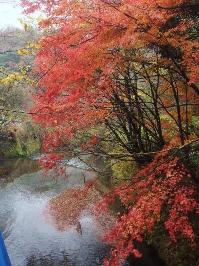 秋色に染まった九州の旅ーその1(熊本県)