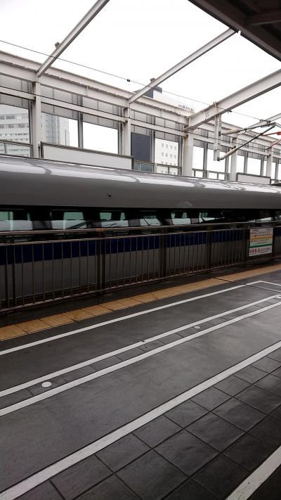 リターン大阪でタイの下準備