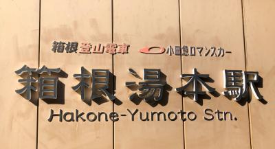 2020 初旅 定山渓から箱根へ おくゆもとに泊まる 瓔珞 ロマンスカー