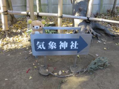 初詣 並ばない神社参りクマ!フォアグラもあるよ(謎)