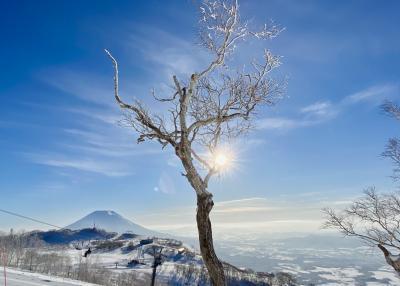 北海道ニセコでSKI「ノーザンリゾートアンヌプリ」滞在記