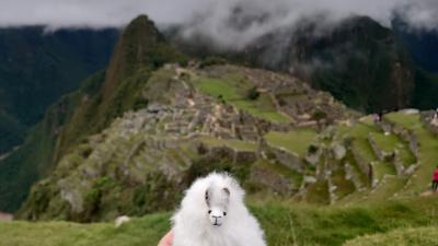 南米マチュピチュ・イグアスの滝を目指す旅2019④