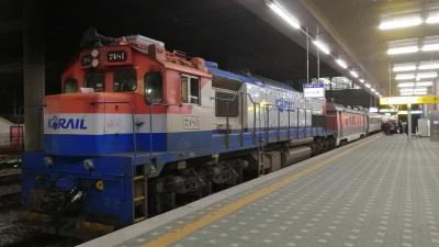 2019-2020 意味なく韓国への2回旅 中央線夜行列車&釜山うに丼