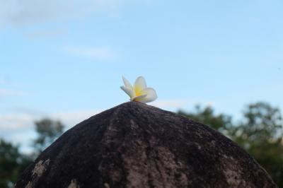 カンボジア&ラオス&タイ旅行11 ラオス南部編 チャンパサック編 ワット・プーと美しきメコン