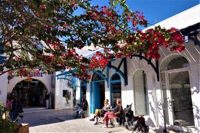 チュニジア周遊とジェルバ島(6)----ジェルバ島
