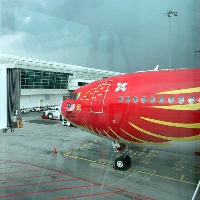 初クアラルンプール Air Asiaで週末弾丸2泊4日旅!: 1日目