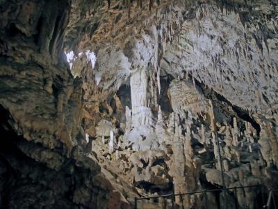 喜寿記念スロヴェニア・クロアチア12日間旅行記⑥ポストイナ鍾乳洞の観光