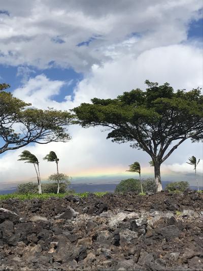 4世代で行く ハワイ ハワイ島