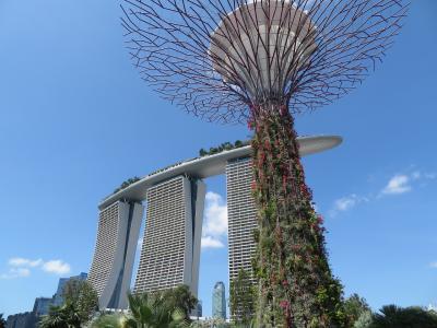 シンガポールに行ってきました。