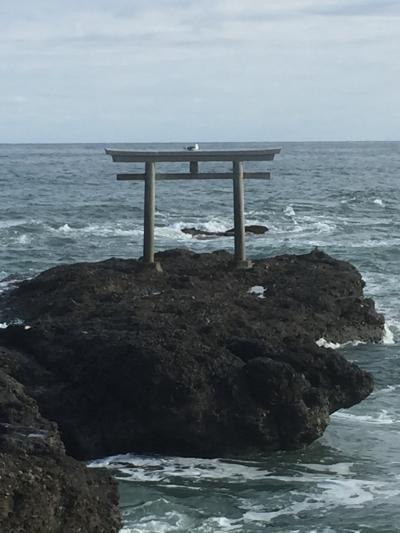 かんぽの宿泊~アクアワールド大洗見学の旅1/2