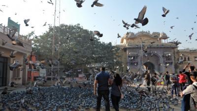 ★年末年始の初インド一人旅★DAY2後編【ジャイプール】シティパレスと最高のラッシー