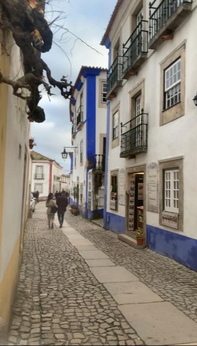ポルト~リスボン~マドリード 冬の南欧一人旅 3日目 リスボン郊外ツアー参加