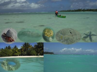 25周年記念 クック諸島 Day4-6(カヤックとシュノーケリング)