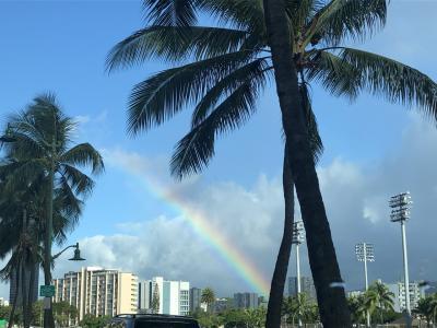 ハワイお土産リサーチ2020
