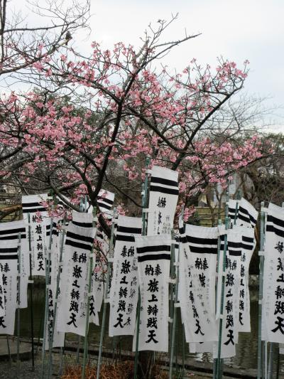 2019年2月 関東3日目 その3 鎌倉 鶴岡八幡宮・荏柄天神社・鎌倉宮