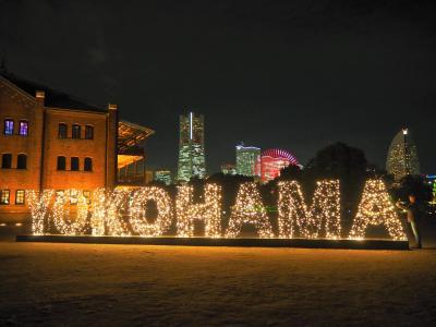 山手西洋館クリスマス飾りと横浜のイルミネーションを見に出かけてきました
