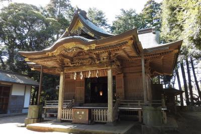 諏訪神社に参拝&バードウォッチング [2016](1)