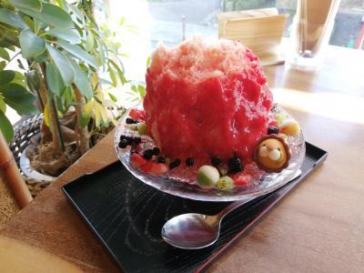 '20 東京御朱印さんぽ 三軒茶屋2(かき氷喫茶バンパク~和kitchenかんなの第1回氷楽祭)