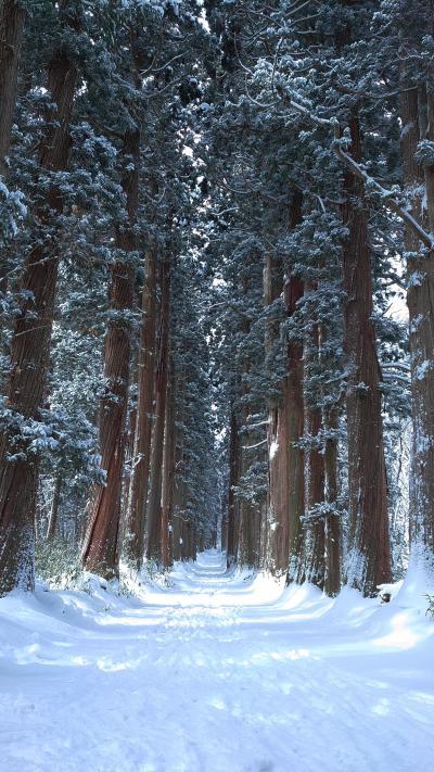 長野旅③ ~神秘の秘境。冬の戸隠神社~