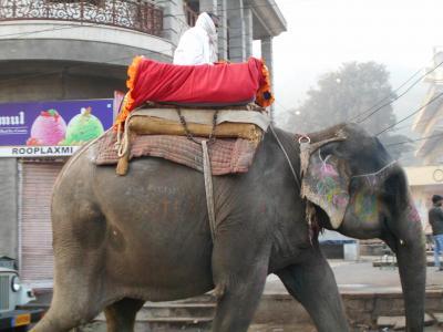 8つの世界遺産を訪れるインド5日間 3
