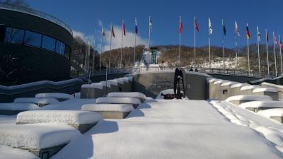 国際スキージャンプ競技大会と円山界隈を少し散策